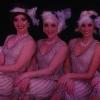 Vintage Dancers, Troupe 136